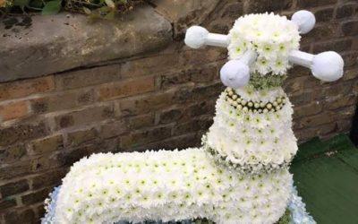 The Flower Pot Gravesend