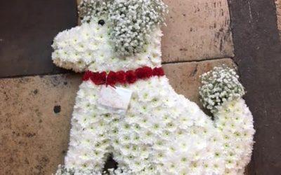 Helens Flowers in Grantham