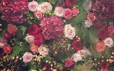 Rose Hamson Flowers