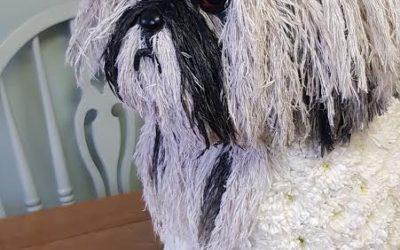Ivy Bluebells Florist