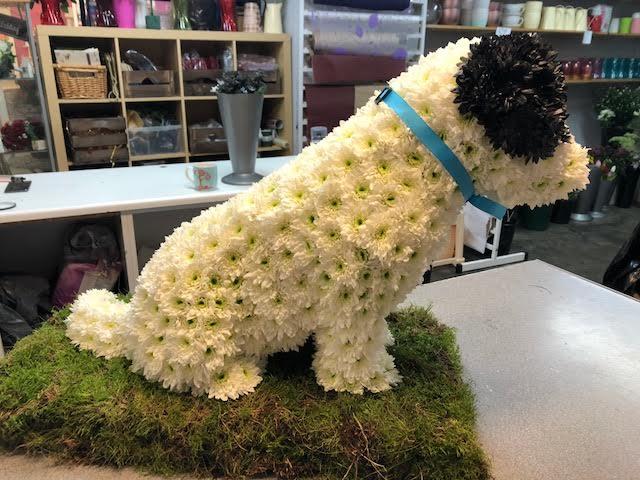 Petals Garden Centre Florist